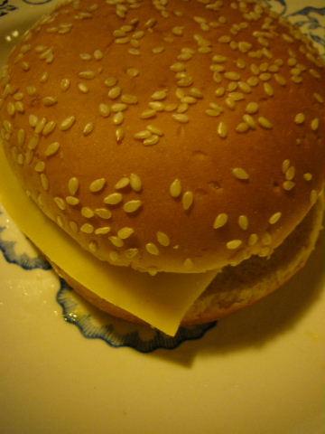 ■ジャンク(冷蔵ハンバーガー)_a0014299_19281759.jpg