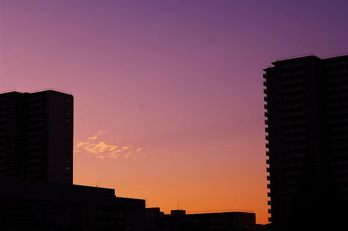 フットワーク軽過ぎ!神戸・ポートピア花明かりフェスタ パート1_f0032011_21531527.jpg