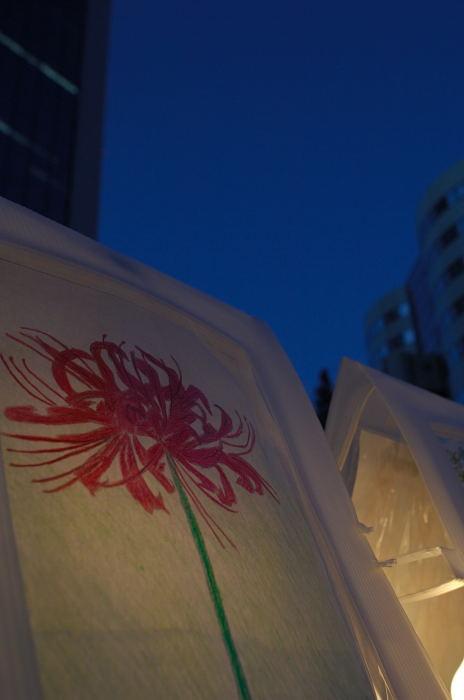 フットワーク軽過ぎ!神戸・ポートピア花明かりフェスタ パート1_f0032011_21541187.jpg