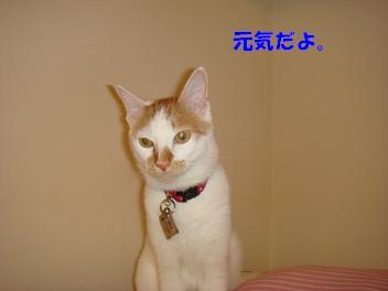 f0046854_20103127.jpg