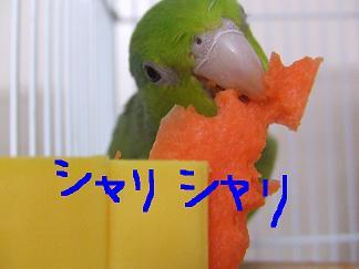 b0082757_2205735.jpg
