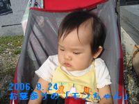 a0052666_0432072.jpg
