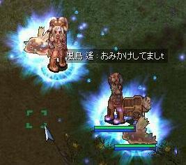 b0032787_23421787.jpg