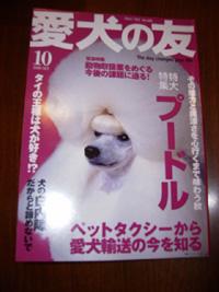 本日発売『愛犬の友』_b0084194_23403048.jpg