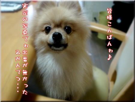 b0078073_19263893.jpg