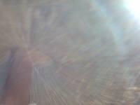 f0060381_1343296.jpg