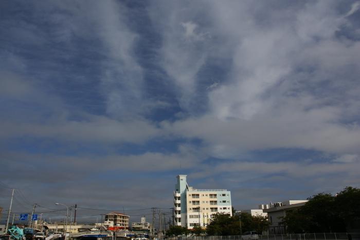 雨上がり…朝!_e0077521_22544750.jpg