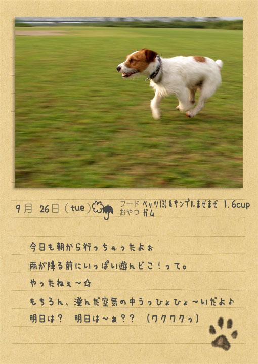 b0040323_06227.jpg