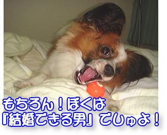 f0011845_0195045.jpg