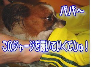 f0011845_0301147.jpg