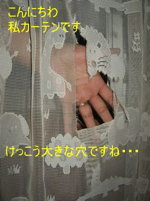 e0085147_23124013.jpg