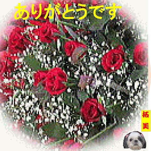 d0083764_11512667.jpg