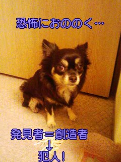 a0043579_950406.jpg