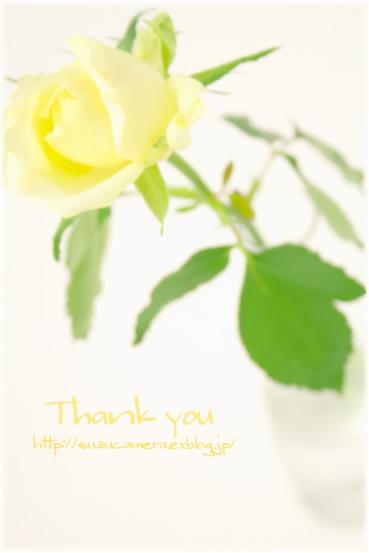 ありがとう_f0100215_0494269.jpg