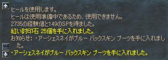 b0056117_975519.jpg