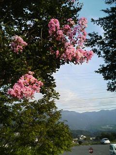 Mt. ENA ROCK FESTIVAL in 馬籠宿_e0013944_1583129.jpg
