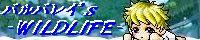 b0071345_23293775.jpg