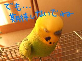 b0082757_02449.jpg