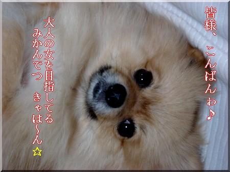 b0078073_22103119.jpg