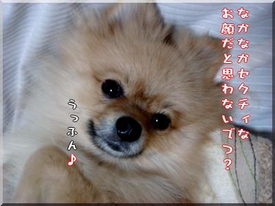 b0078073_22123892.jpg