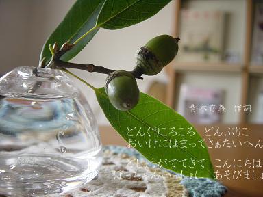 f0093208_2017544.jpg