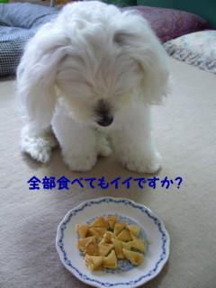 f0005727_1624474.jpg