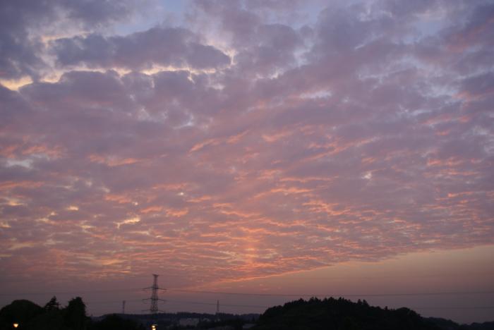 """""""サンピラー""""夕陽!?_e0077521_2012598.jpg"""