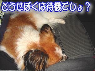 f0011845_16033.jpg