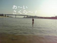 f0086355_2265310.jpg