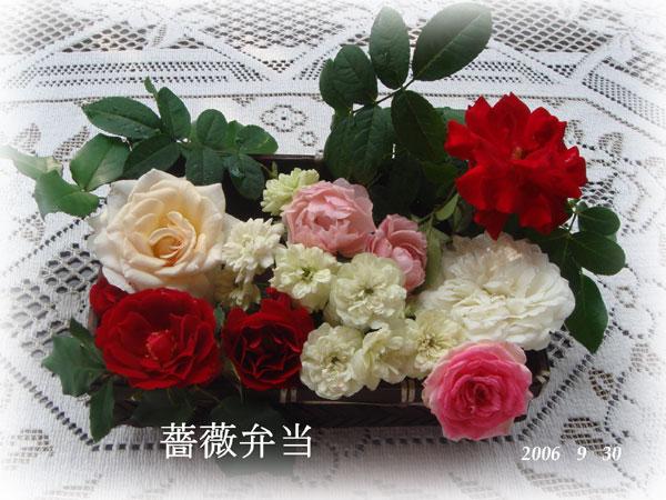 f0057006_14552188.jpg