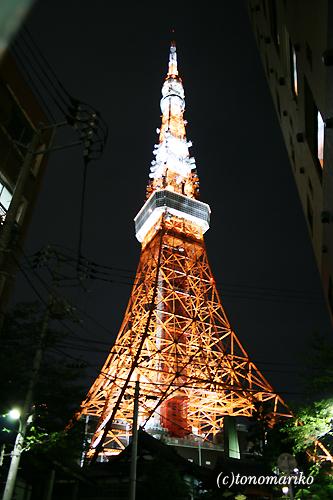 美しいタワーを眺めながら_c0024345_18221129.jpg