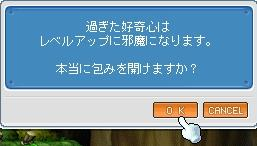 b0024863_354263.jpg