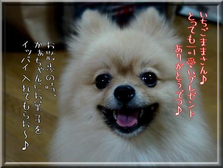 b0078073_9482450.jpg