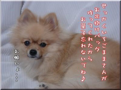 b0078073_9562657.jpg