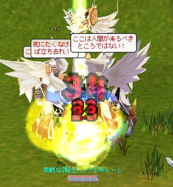 b0027699_64939.jpg