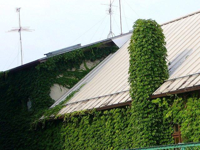 日本基督教団堅田教会_c0094541_16565795.jpg