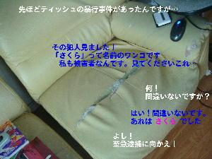 f0066824_15414418.jpg