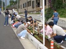 木花小学校の花の植栽と杉ネームプレート_f0105533_056016.jpg