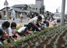 木花小学校の花の植栽と杉ネームプレート_f0105533_057558.jpg