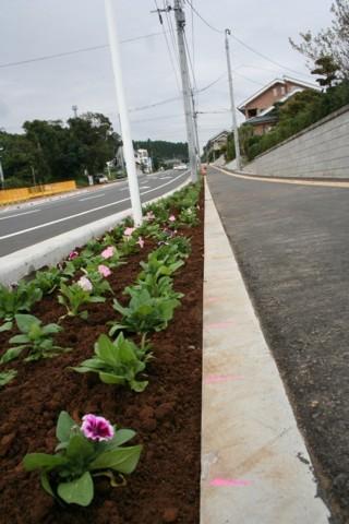 木花小学校の花の植栽と杉ネームプレート_f0105533_119165.jpg