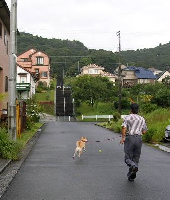 2006年10月3日(火)・・・秋晴れⅡ_f0060461_13512295.jpg