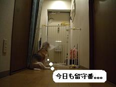 b0098660_22373380.jpg
