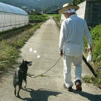 2006年秋季日本犬保存会北九州支部展_b0057675_10224242.jpg