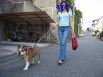 f0081519_1623696.jpg