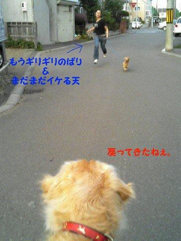 f0086474_22214170.jpg