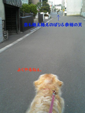 f0086474_2221590.jpg