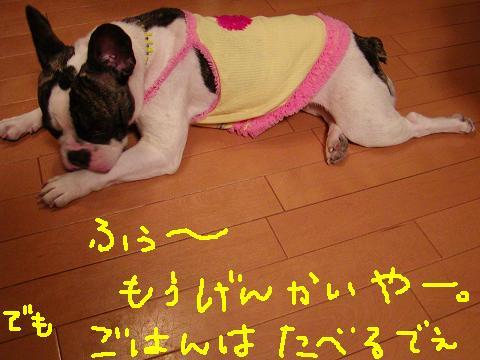 f0032507_157868.jpg