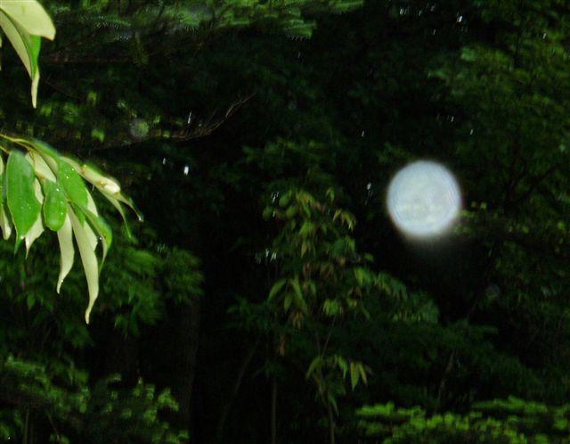 那須の満月_d0077719_19372689.jpg