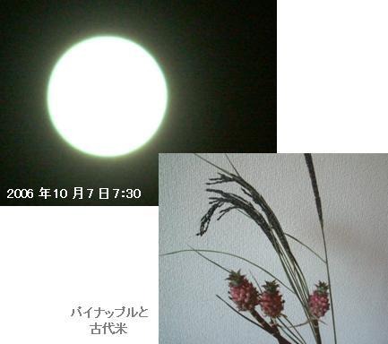 c0039924_222481.jpg