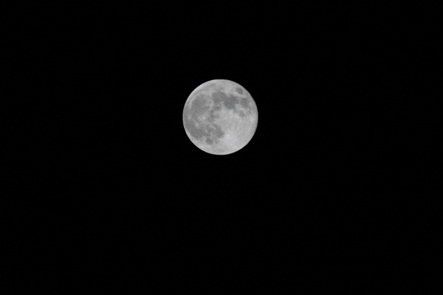 今日の満月_f0037633_22331862.jpg